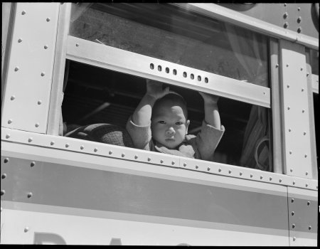 San Francisco, California. A young evacuee looks out the window of bus before it starts for Tanfora . . .