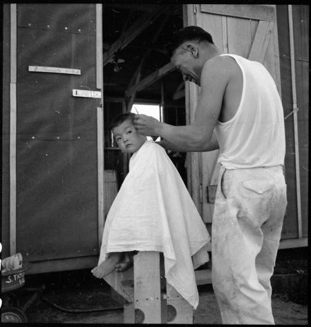 Manzanar Relocation Center, Manzanar, California. Little evacuee of Japanese ancestry gets a haircut.
